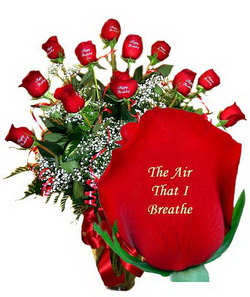 https://www.moja-cvecara.com/wp-content/uploads/2017/01/the_air_that_i_breathe.jpg