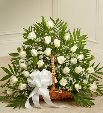 belo cvece u korpi beograd